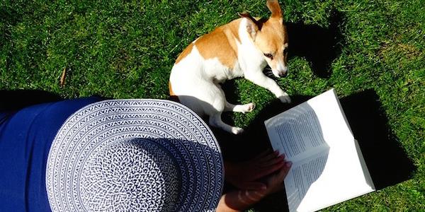 ペットの知識が身につく!ユーキャンの愛犬飼育スペシャリスト通信講座の特長とは?